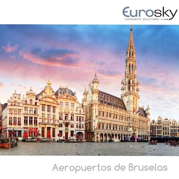 volar en avion privado a Bruselas